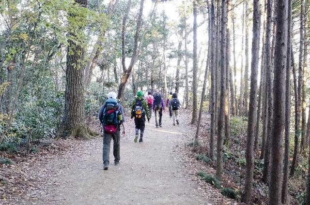 高尾山に登山をしようと考えている初心者へのお得情報!