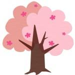上野公園の桜はいつまで見れるの?イベント、アクセスは?