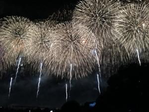 足立花火大会2015最寄り駅はどこ?場所取りは?有料席が確実!?